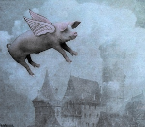 when pigs fly, pig flying