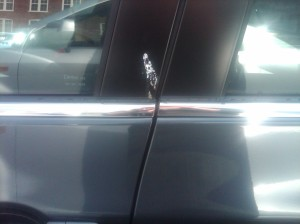 bird poop on new car