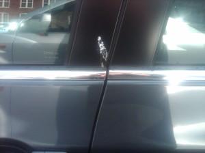 bird poop on new car