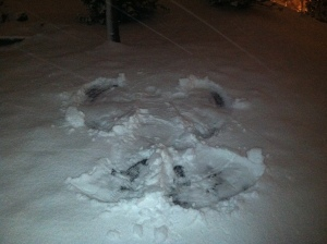 snow angel, snow, playing in snow